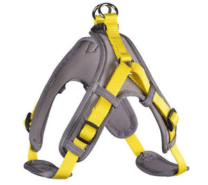 Neoprene Vario Quick Harness
