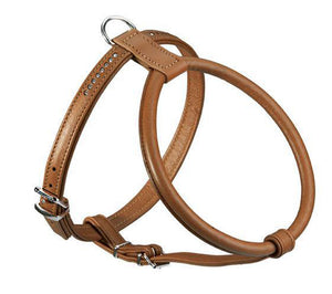 Round & Soft Luxus Elk Petit Harness