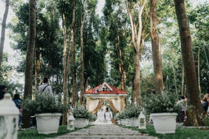 The Forest Barn and Hizon's Wedding Package