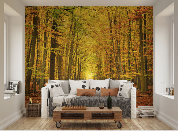 The contrasting and warm orange, brown and yellow colours depicting Autumn leaves and trees will create a lovely scene of walking down a forest lane in your home.