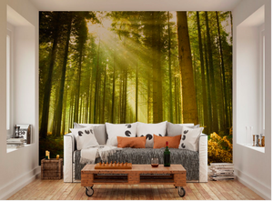 Sunrise shining through these gorgeous, tall trees makes a perfect forest scene on a sunny day in this Evergreen Wall Mural design.