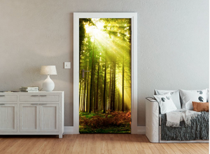 A fun take is this door wallpaper - sun rays shining through the gorgeous forest and trees.