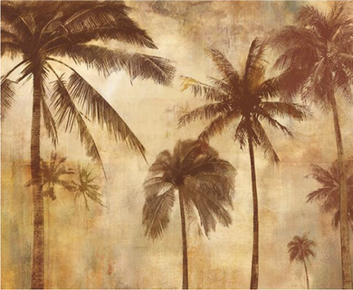 Palm Trees GM190305 -11