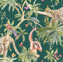 If you looking for a bright tropical wallpaper australia we have the answer. Lazy leopards, cheeky orangutans and parrots make up this lush scene.