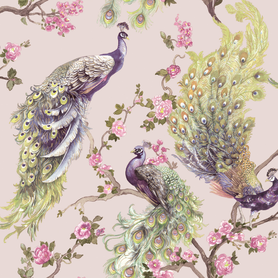 A soft pink wallpaper background with painted peackocks with their colourful feathers, and small little pink roses