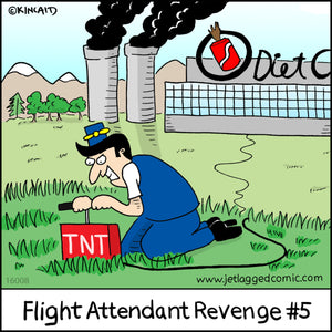 """Flight Attendant Revenge #5"" 16005 Digital Download"