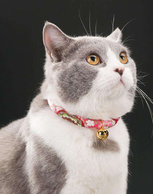 Kawaii Handmade Cat Collar