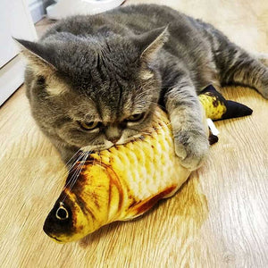 Cute Fish Cat Catnip Toys