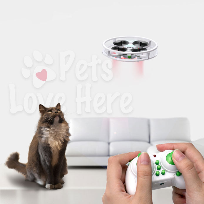 Kitty-Fun Pocket Drone