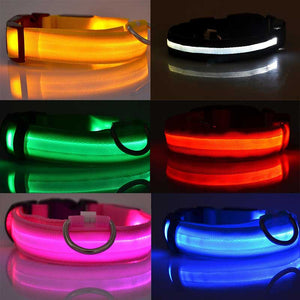 LED Pet Night Safety Visible Collar
