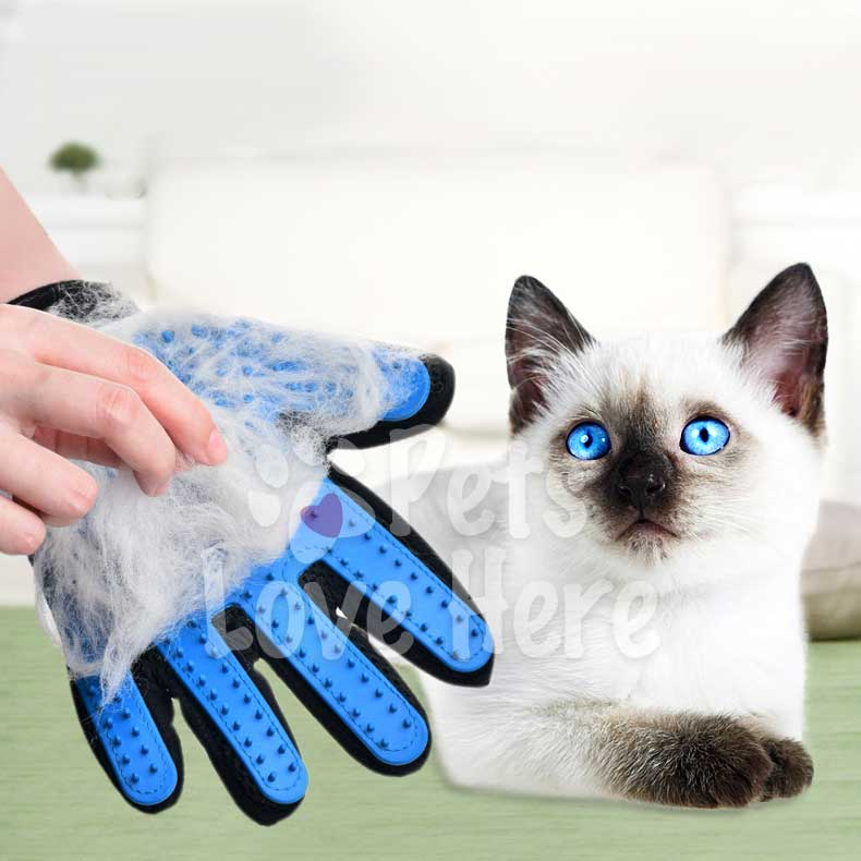 Pet Deshedding Brush Glove (Best for Cats/Dogs)