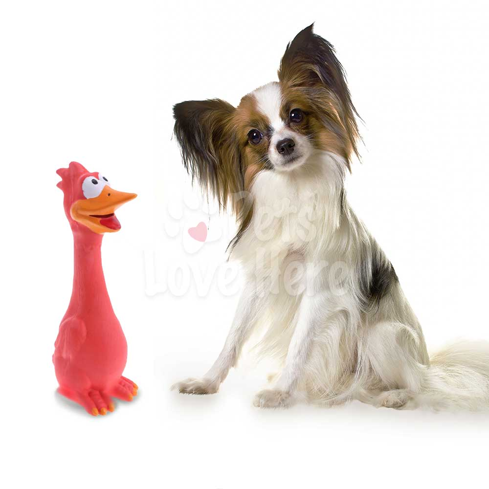 Screaming Rubber Chicken Toy For Dogs