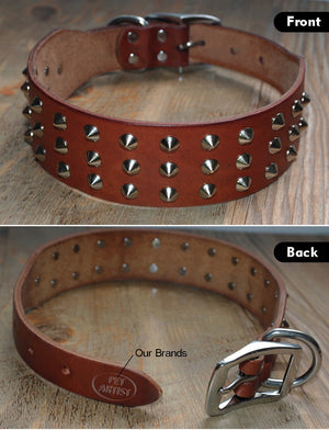 Spikes Dog Collar