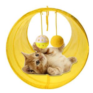 Funny Cat Play Tubes With Balls