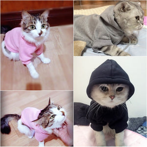 Fashion Hoodies  For Cats And Dogs