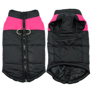 Winter Jacket for your Puppy