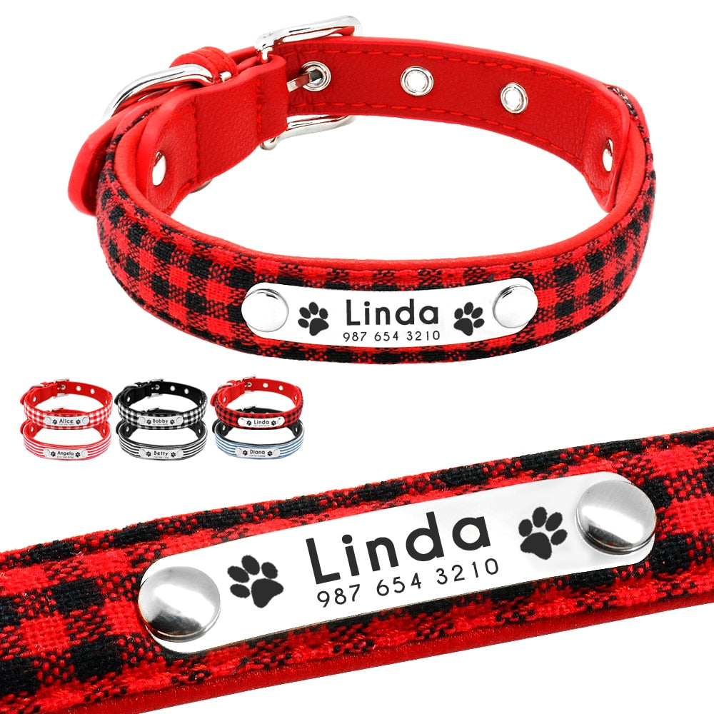 Customized Cat Collars