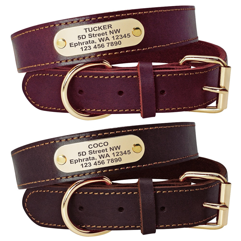 Genuine Leather Personalized Collars