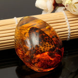 Beautiful Amber Butterfly Stone Pendant Necklace