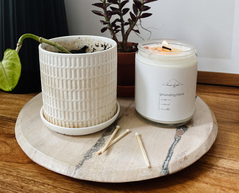 House of Jude candle with a small plant
