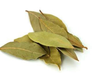 Bay Leaf (Laurel) – Laurus Nobilis