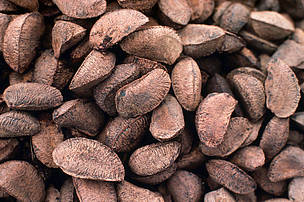 Brazil Nuts, In Shell 1 Lb.