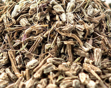 Load image into Gallery viewer, Echinacea Root - Echinacea Purpurea M.