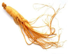 Load image into Gallery viewer, Ginseng Root - Panax ginseng CA Meyer