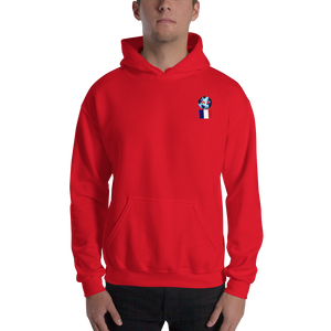 FRANCE ...Travellers Logo....Hooded Sweatshirt