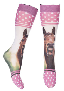 Riding socks -Horse Photo-