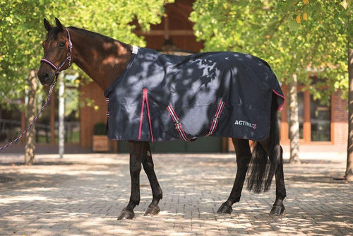 Turnout rug -Active 19-