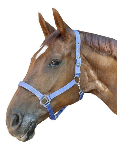 Head collar -Sydney- with soft padding