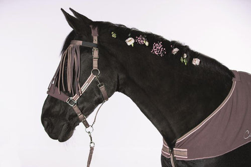 Head collar with fly fringes&leadropesnap-Melody-