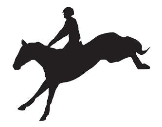 Car sticker -show jumper- (Set of 5)