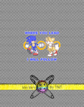 SONIC AND TAILS PANEL - PERPETUAL PREORDER