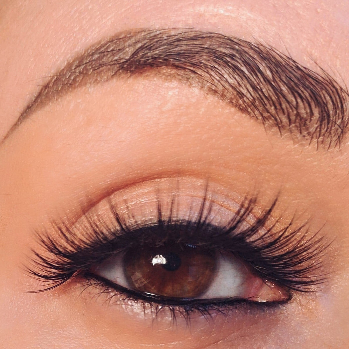 8952182cab3 Reusable Silk Strip Lashes - Totally Lashed Up   Dirty little stop out