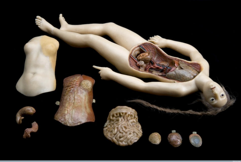 L0058207 Wax anatomical figure of reclining woman, Florence, Italy, 1