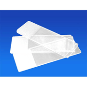 Livingstone Microscope Glass Slides - Frosted Slides (Pack of 50)