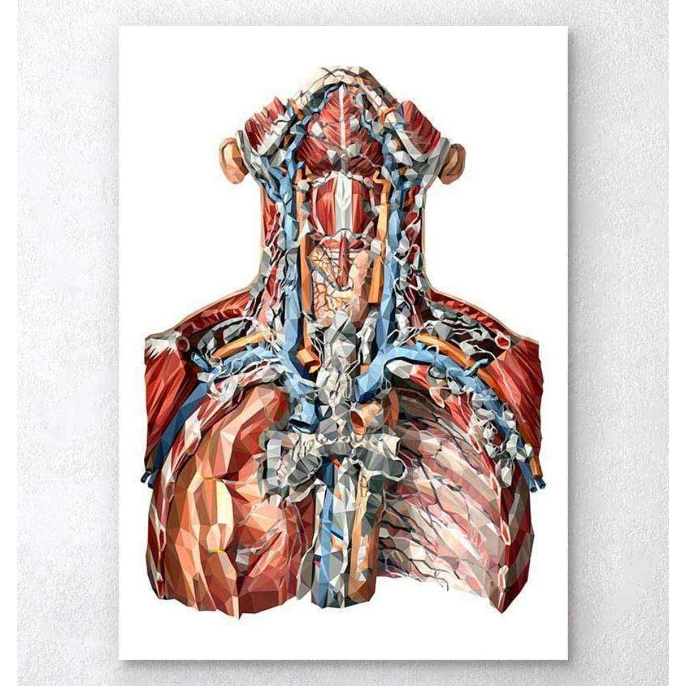 Codex Anatomicus Anatomical Print A5 Size (14.8 x 21 cm) Neck Arteries And Lymphatic System Anatomy Art
