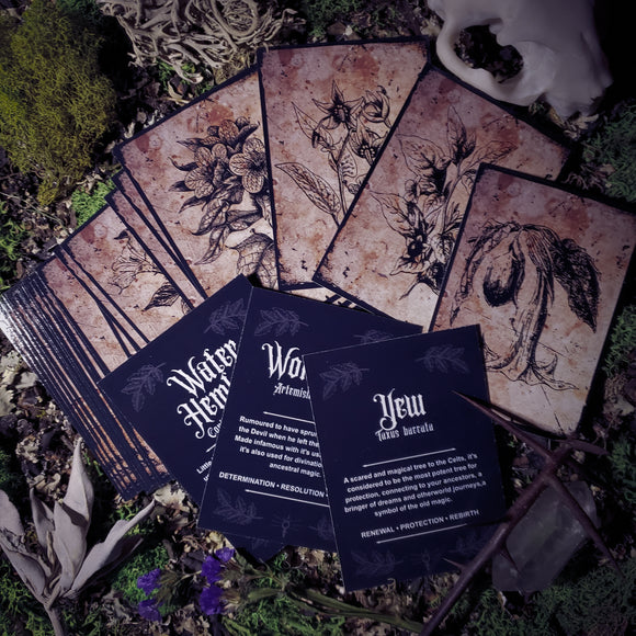 Shadow Garden Oracle Cards