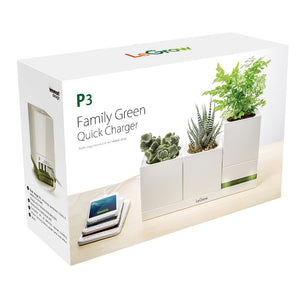 Family Green - Quick Charger