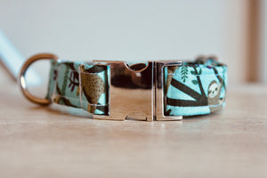 Steady on Sloth: Handmade Dog Collar