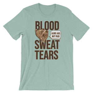 Blood Sweat & Tears T-Shirt - Making Moves Daily