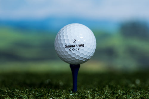 Bridgestone Mix Golf Lake Balls
