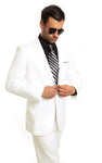 MENS SUIT 2-PC SLIM FIT SUITS M211S