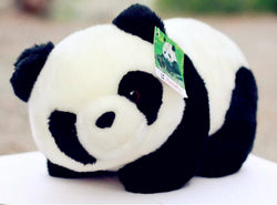 Lovely Kawaii Cute Kids Panda - Voilet Panda Store