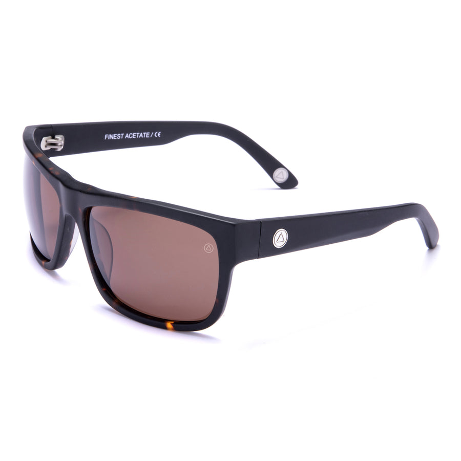 Testudo dura, Sunglasses Brown / Brown