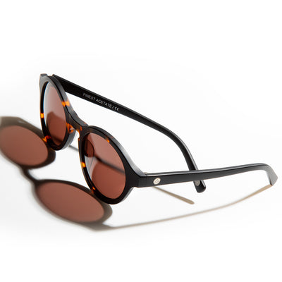Isigodi iBrown Tortoise / Brown