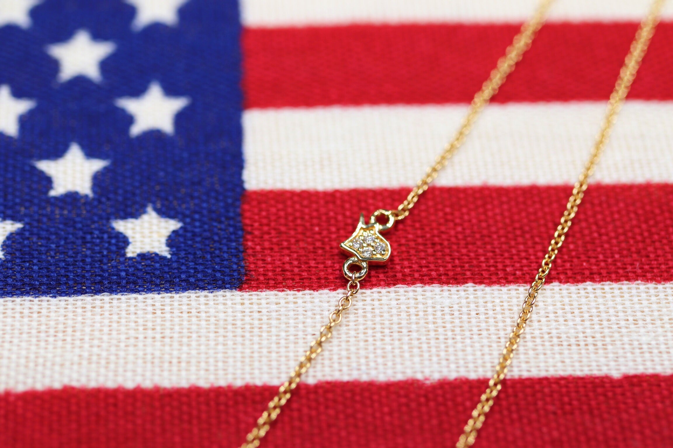14K Yellow Gold With Diamond USA Necklace - Ice Motif