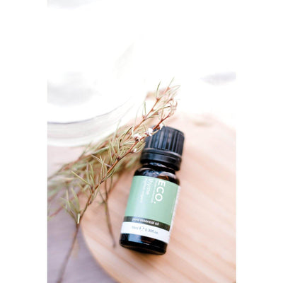 Thyme Pure Essential Oil (4112876732471)